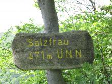 Wandergruppe erkundet die Hessische Schweiz