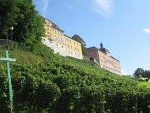 Wandergruppe verbrachte Wanderwoche am Bodensee